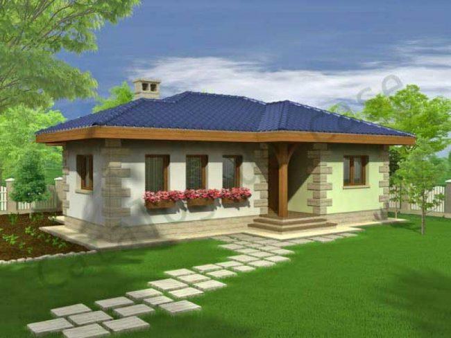 proiect casa brandusa 01